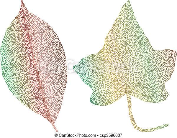 autumn leaves, delicaat, textuur - csp3596087