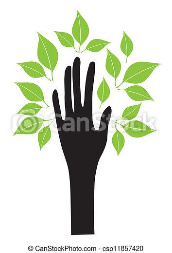 bladeren, hand - csp11857420