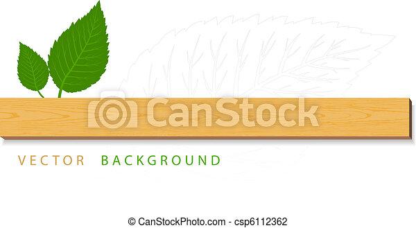 bladeren, hout, groene - csp6112362