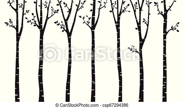 boompje, witte , silhouette, achtergrond, berk - csp67294386