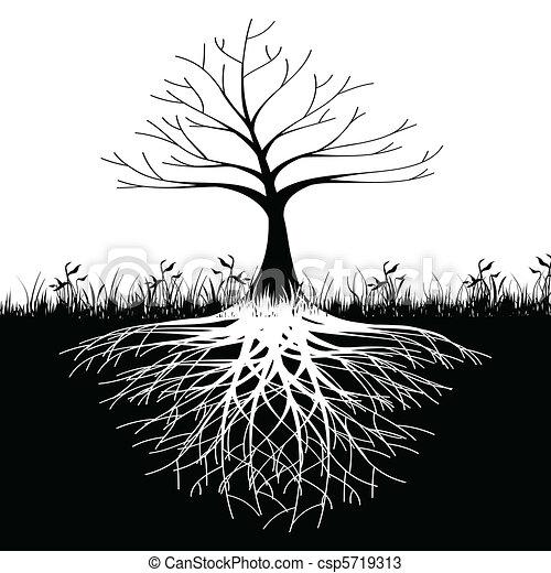 boomwortels, silhouette - csp5719313