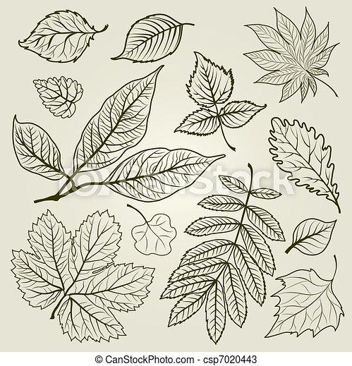 herfst, vector, set, vellen - csp7020443