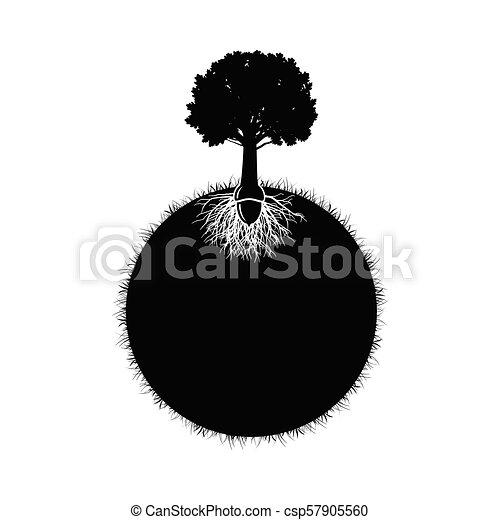 silhouette, eik - csp57905560