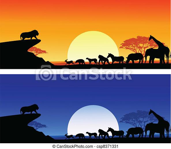 silhouette, safari - csp8371331