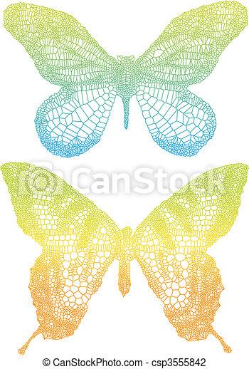 vlinder, kleurrijke - csp3555842